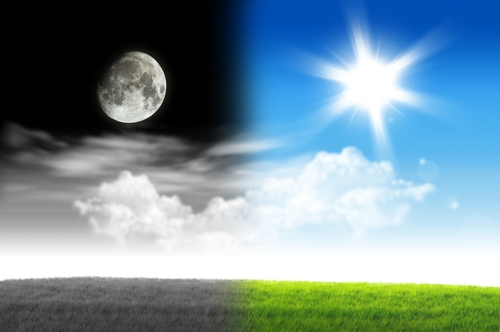 Moon Day is July 20
