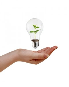 Going green boosts employee morale and helps differentiate your business from the competition.